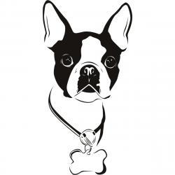 French Bulldog clipart boston terrier