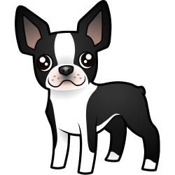 Terrier clipart boston terrier