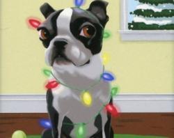 Boston Terrier clipart christmas