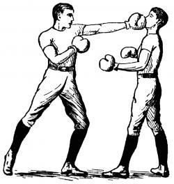 Boxer clipart