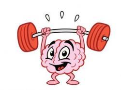 Brains clipart muscular