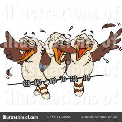 Kookaburra clipart