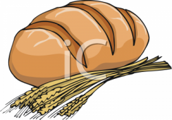 Bread clipart grain product