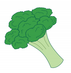 Cabbage clipart brocoli