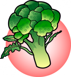 Broccoli clipart brocoli