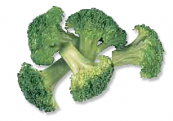 Broccoli clipart cooked vegetable