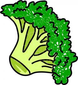 Broccoli clipart food