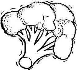 Broccoli clipart vegtable