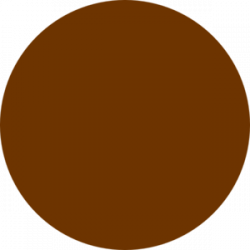 Bronze clipart brown circle