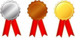 Bronze clipart medal certificate