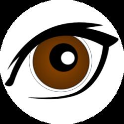 Gaze clipart brown eyeball