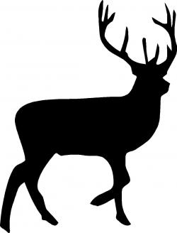 Dear clipart buck