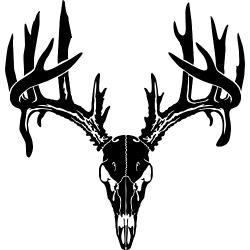 Ssckull clipart elk