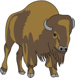 Bison clipart buffalo