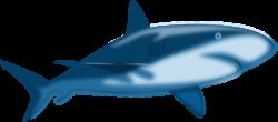 Great White Shark clipart ikan