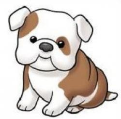 English Bulldog clipart american bulldog