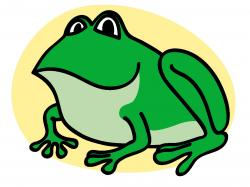 Amphibian clipart green frog