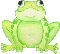 Tree Frog clipart fauna