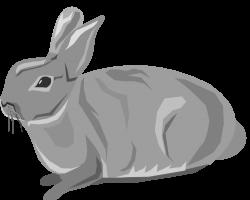 Gray clipart hare
