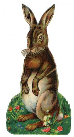 Hare clipart medieval
