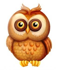 Burrowing Owl clipart cute