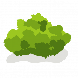 Hedges clipart bush grass