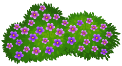 Hedges clipart flower bush