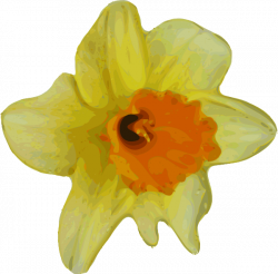 Buttercup clipart large flower