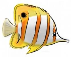 Butterflyfish clipart