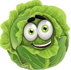 Lettuce clipart funny