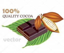 Cocoa Bean clipart choco