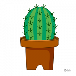 Plant clipart cactus