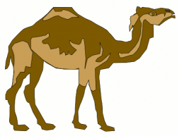 Camels clipart animated