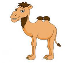 Camels clipart cartoon