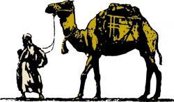 Camels clipart saudi