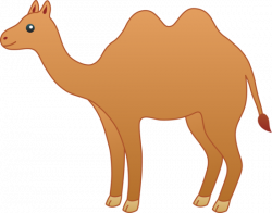 Camels clipart she