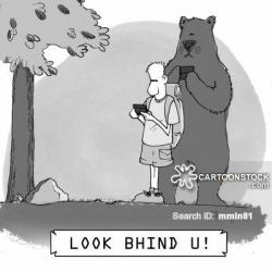 Camp clipart bear attack
