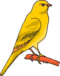 Finch clipart two bird