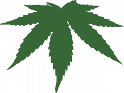 Drawn weed transparent