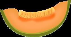 Cantaloupe clipart