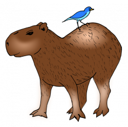Capybara clipart