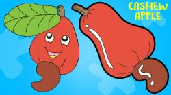 Cashew clipart cartoon