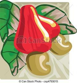 Cashew clipart cashew fruit