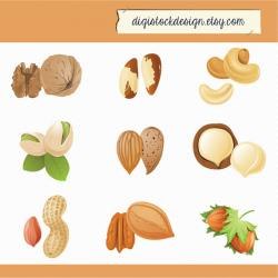 Peanut clipart mixed nuts