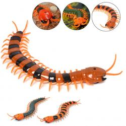 Centipede clipart chinese