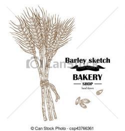 Barley clipart logo