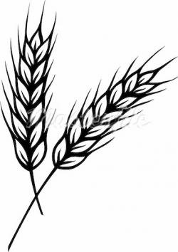 Grains clipart black and white