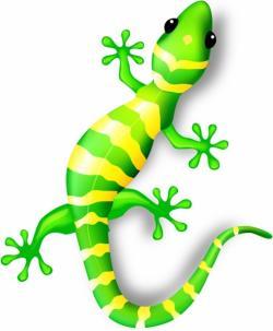 Gecko clipart vector