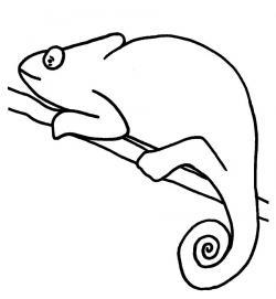 Chameleon clipart outline