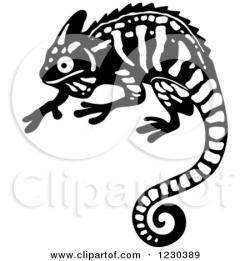 Chameleon clipart wild life